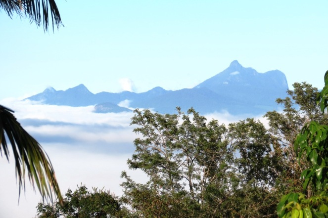 The weather is turning cooler at night, bringing beautiful folds of mist to the valley in the mornings.