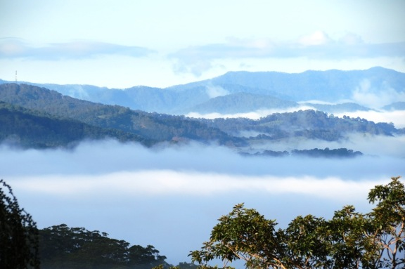 During an early mist morning, the colour blue overpowers all the other colours of the valley.