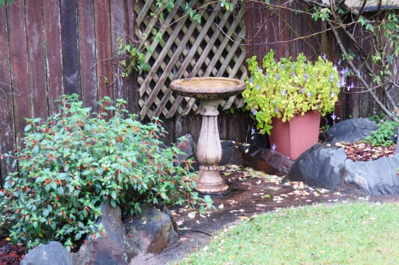 Every garden needs at least one bird bath.