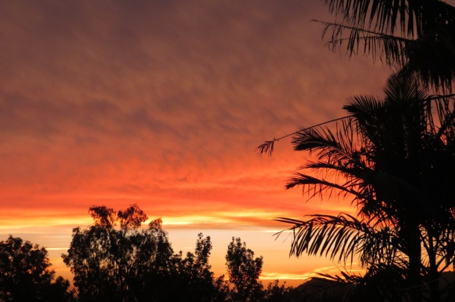 A picture paints a thousand words! This sunset is straight out of the camera, free of any editing.