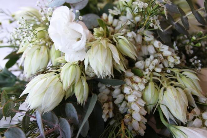 arbour flowers